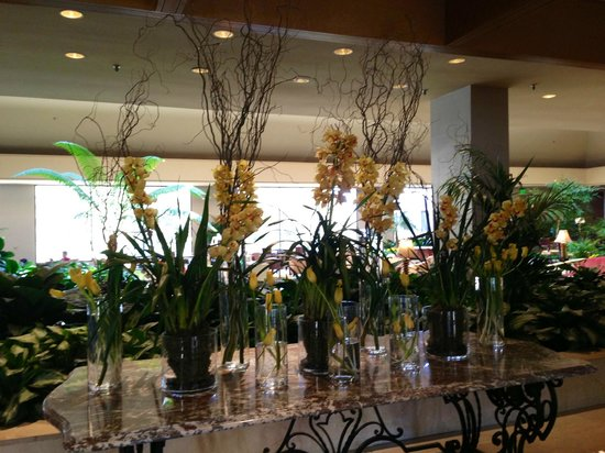 Omni Mandalay Hotel at Las Colinas :                   Front entry orchids