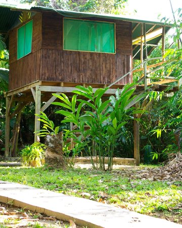 Guaria de Osa Ecolodge:                   A beach side bungalow