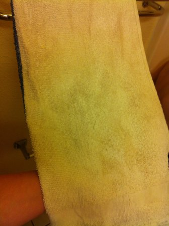 Super 8 Florence: Dirty towels