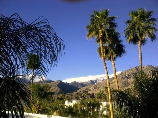 Palm Canyon Resort & Spa:                   VIEW FROM OUR VILLA