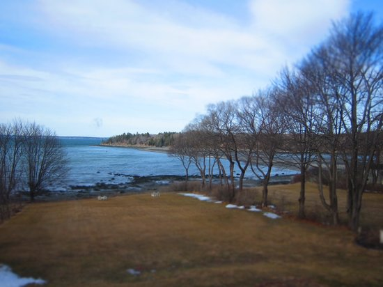 Saltair Inn Waterfront B&amp;B:                   View from Acadia suite window