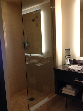 Hyatt At Olive 8:                   Shower and sink