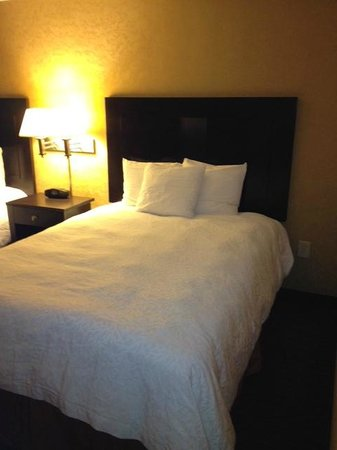 Hampton Inn Atlanta-Georgia Tech-Downtown:                   2 double beds