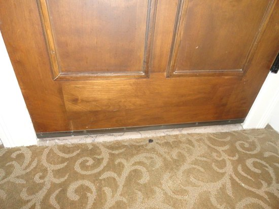 The St. Anthony, a Luxury Collection Hotel, San Antonio: door & carpet
