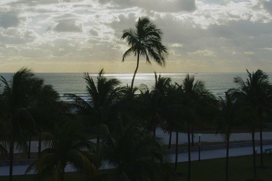 Crescent Resort On South Beach:                   View from the hotel's roof terrace.