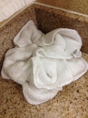 Hilton Garden Inn Richmond Innsbrook:                   very cute! rags shaped into hotel logo :)