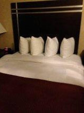 BEST WESTERN Plus Prospect Park Hotel :                   Loved the comfy, square pillows