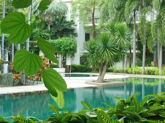 The Park 9, A Living Serviced Residence:                   pool