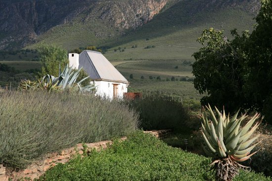 Swartberg Country Manor: bakkershuis