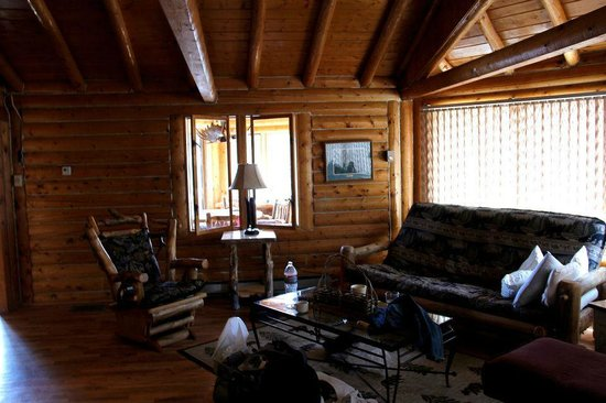 Lazy R Cottages:                   mountain masterpiece at wild basin living room area