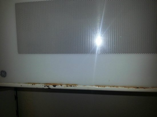 Extended Stay America - Jacksonville - Southside - St. Johns Towne Center:                   Filthy Microwave