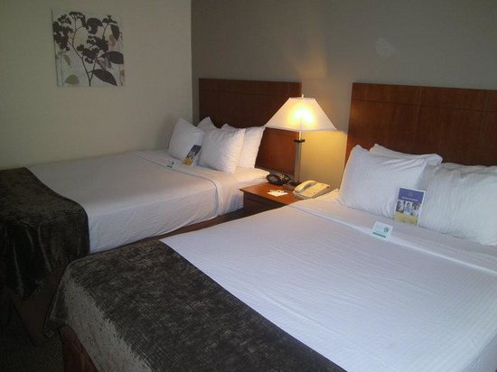 BEST WESTERN Williamsport Inn: Guest Room