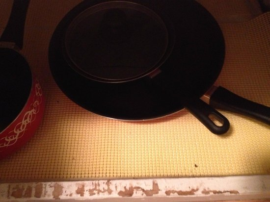 Mouse poop where the pots and pans are. - Picture of ...
