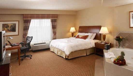 Hilton Garden Inn Toronto/Ajax: King Whirlpool Room