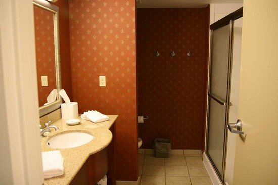 Hampton Inn Jasper: King Walk-In Shower