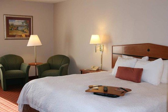 Hampton Inn Greeneville: King Standard