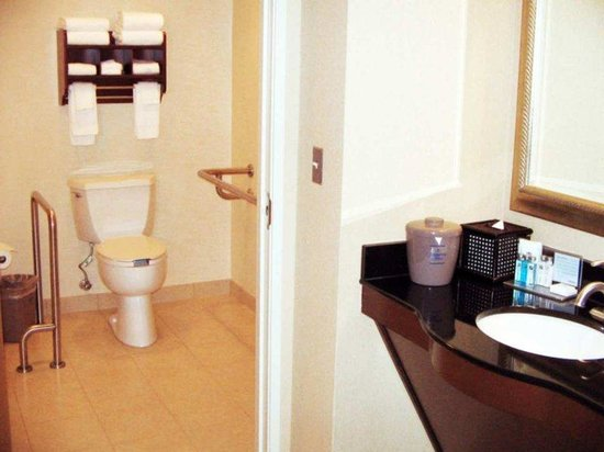 Hampton Inn Fairfax City: Accessible Bathroom