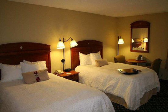 Hampton Inn Auburn: Double Bedded Room