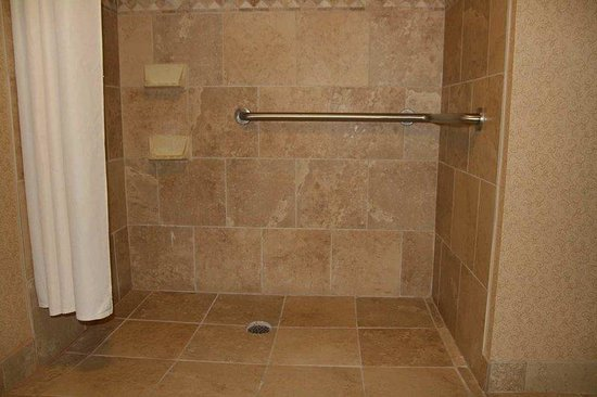 Hampton Inn Auburn: Accessible Roll-In Shower