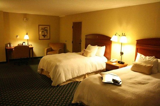Hampton Inn Auburn: Accessible 2 Beds Room