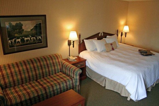 Hampton Inn Quincy: King Study