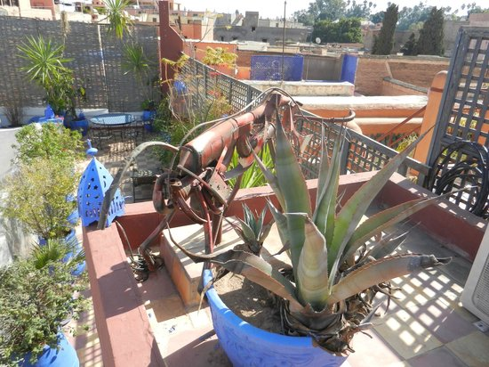 Riad Chouia Chouia: La terrasse donnant sur les toits de Marrakech