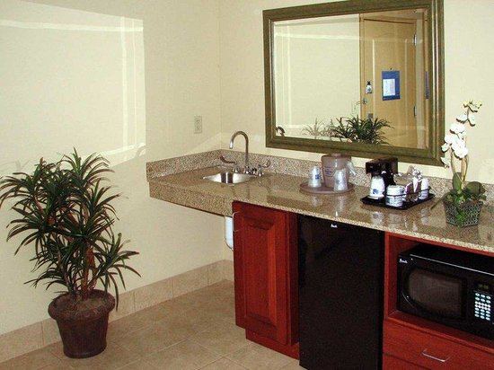 Hampton Inn Knoxville-West At Cedar Bluff: Studio Wet Bar Area