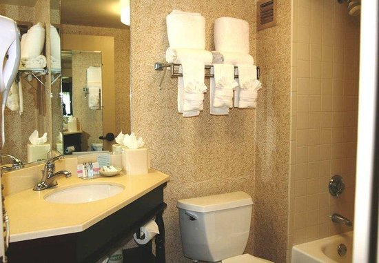 Hampton Inn Jacksonville - I-95 South: Guest Room Bathroom