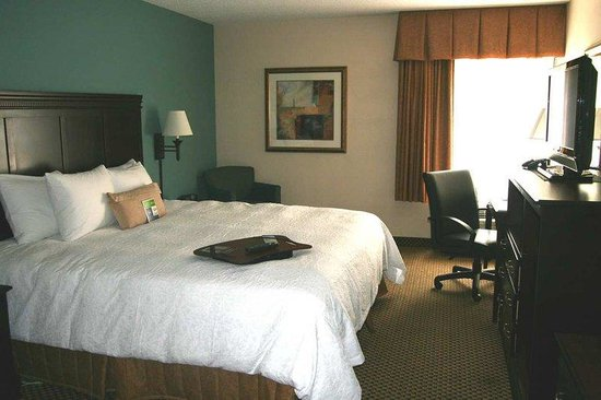 Hampton Inn Jacksonville - I-95 South: King Guest Room