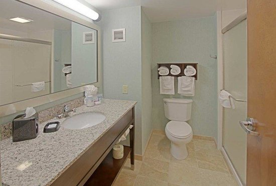 Hampton Inn Rehoboth Beach: Standard King Bathroom