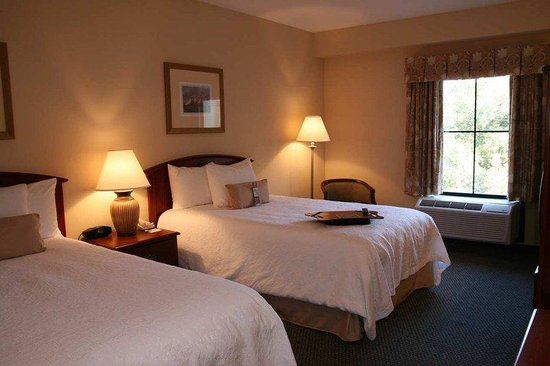 Hampton Inn Charleston - Daniel Island: Standard Double Room