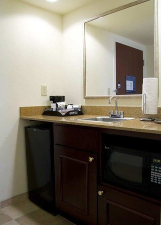 Hampton Inn & Suites Clermont: Wet Bar