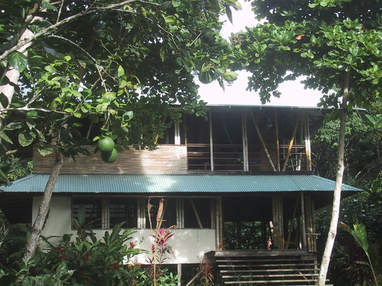 casa bambu resort