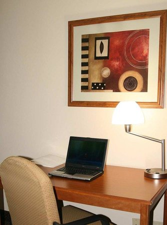 Hampton Inn Aiken: Work Desk