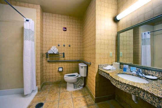 Hampton Inn Enterprise: Accessible Bathroom