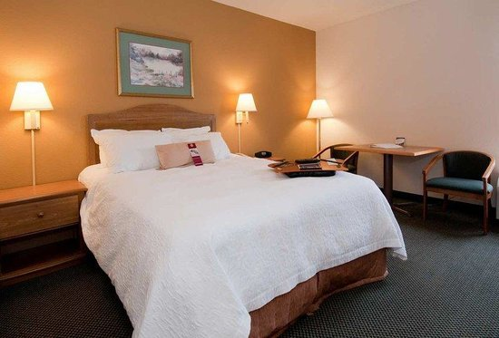 Hampton Inn Brevard: King Standard