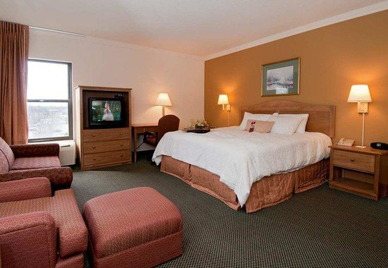 Hampton Inn Brevard: King Study