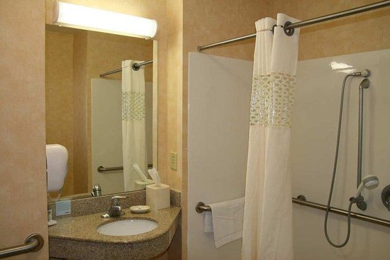 Hampton Inn Pine Grove: Walk-in Accessible Shower