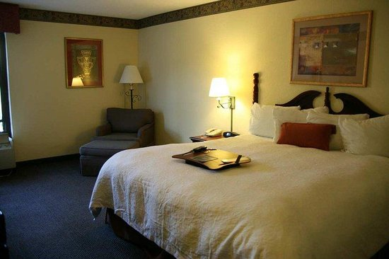 Hampton Inn Mount Dora: King Standard