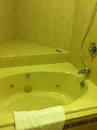 Sheraton Eatontown Hotel: Tub and bathroom was SPOTLESS!!!