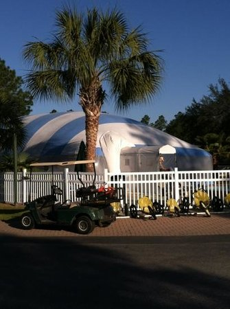 Photo of Gulf Pines Koa Rv Park Milton