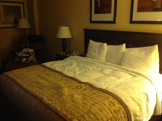 Hilton Arlington: Bed