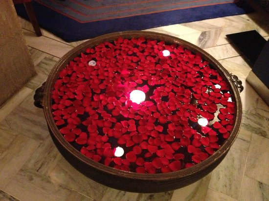Fresh Roses With Water Fresh Rose Petals Lobby