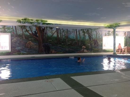 Whitefield, NH: the indoor pool