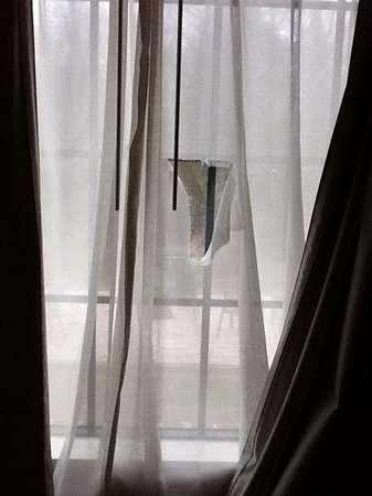 Altavista, VA: torn curtain