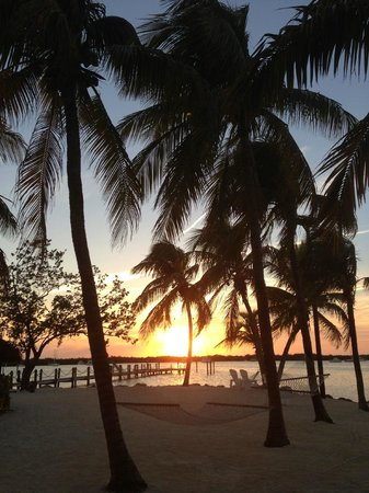 Coconut Palm Inn : Perfect sunset 