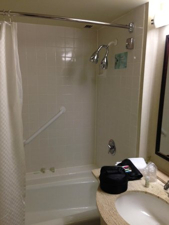 The Westin Atlanta North at Perimeter: Ducha