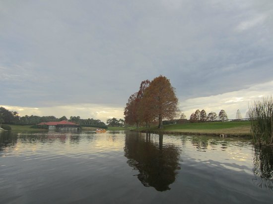 Hyatt Regency Grand Cypress: Lago del hotel