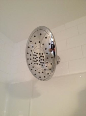 Hotel des Coutellier: Footy - sized shower head
