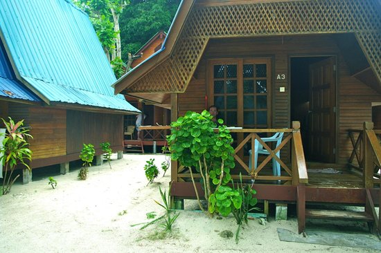 New Cocohut & Cozy Chalets: Chalet sea view